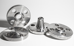 310 SS Flanges